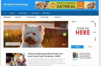 27+ Best Google Adsense Optimized WordPress Themes 2020