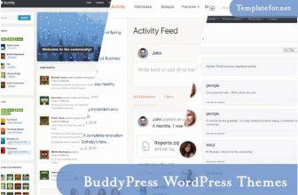 30+ Best BuddyPress WordPress Themes For Community