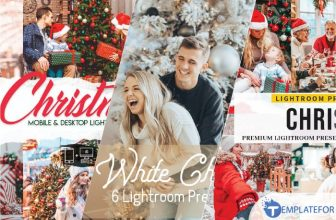 20+ Top Christmas Lightroom Presets For Professional Effect 2021