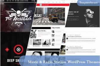 25+ Best Music & Radio Station WordPress Themes 2020