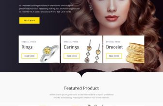 28+ Best Jewelry WordPress Themes For E-commerce Websites 2020
